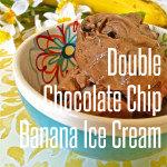 double-chocolate-chip-banana-ice-cream