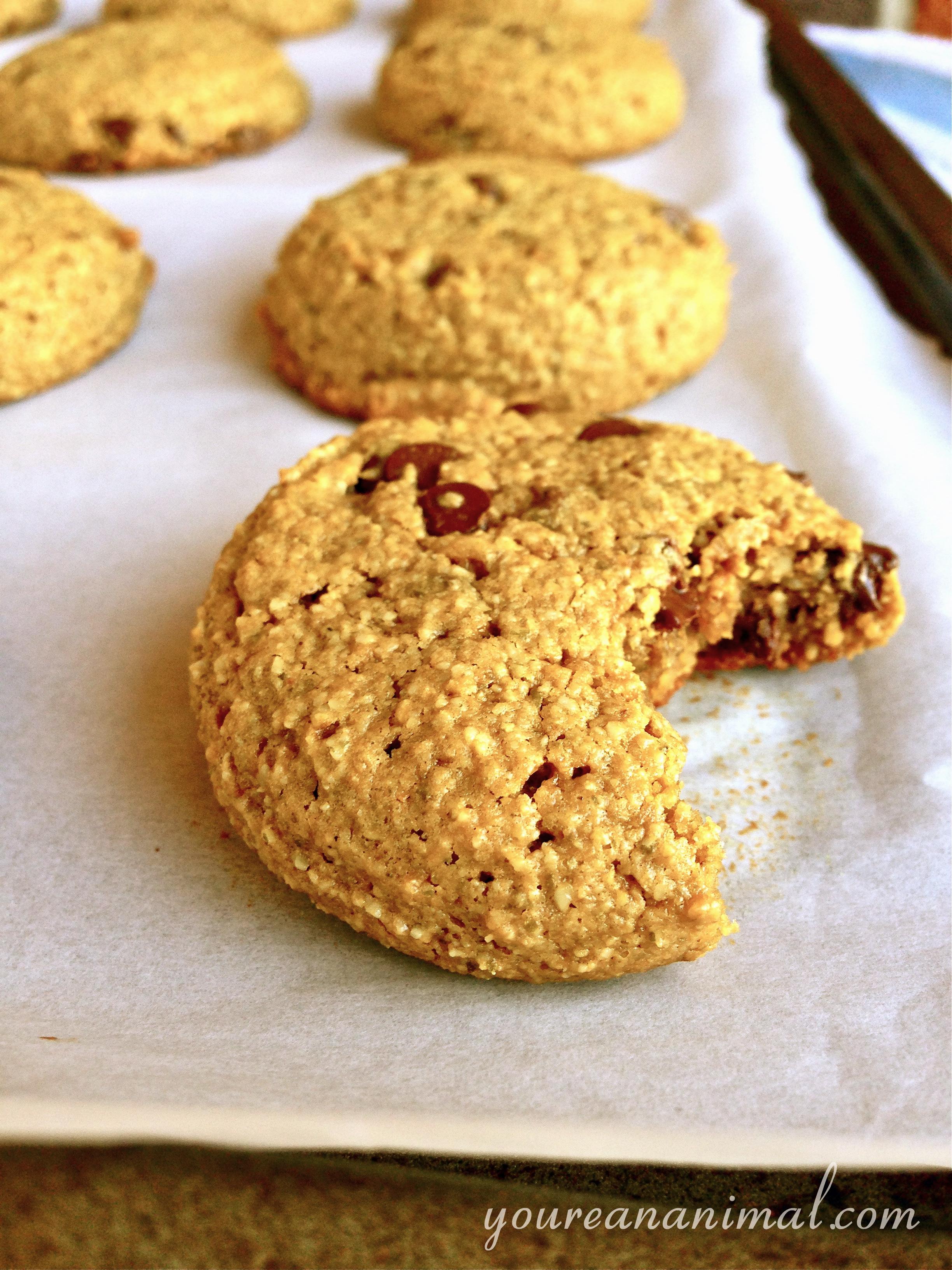 CCcookie2