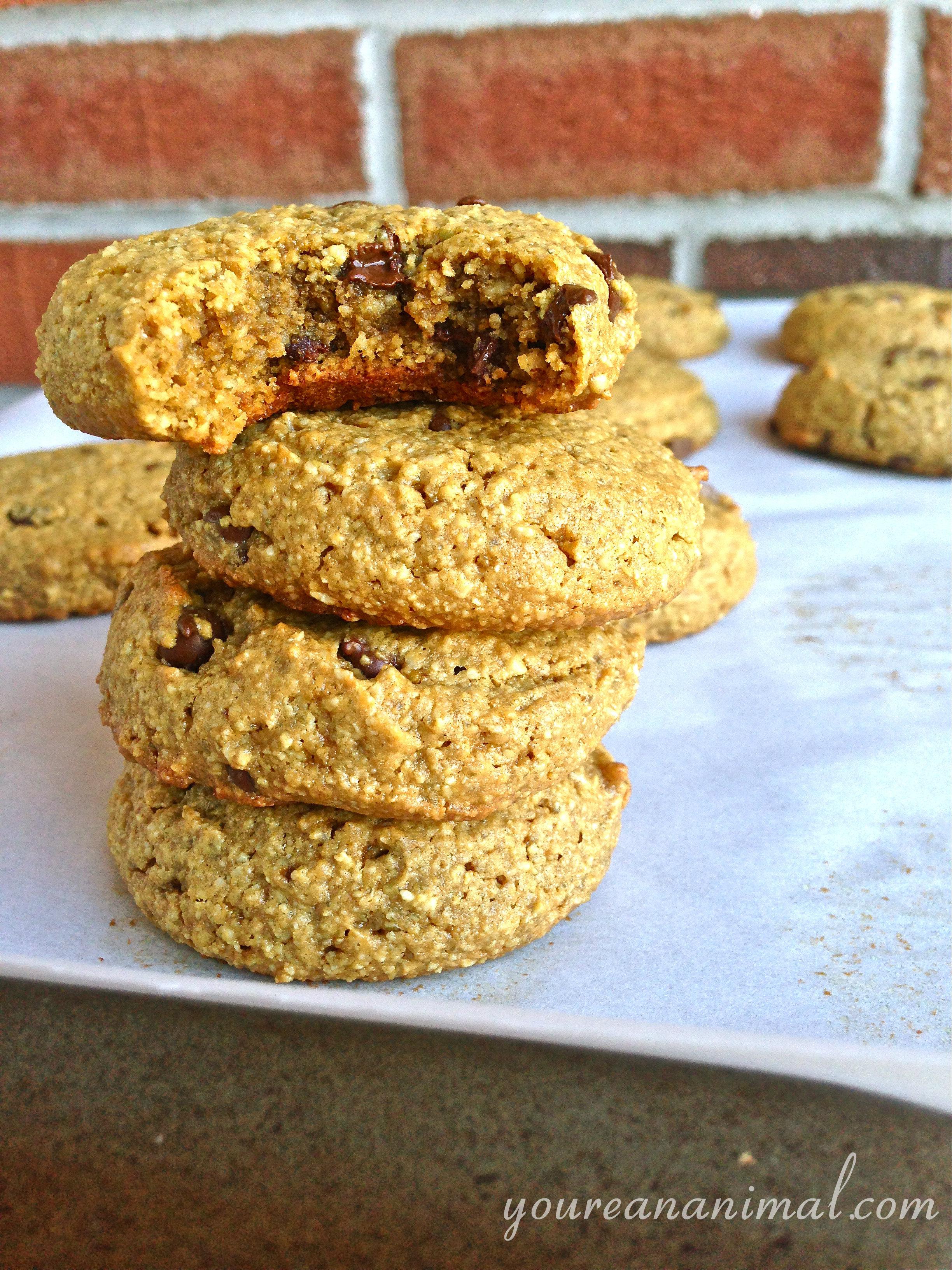 CCcookies10