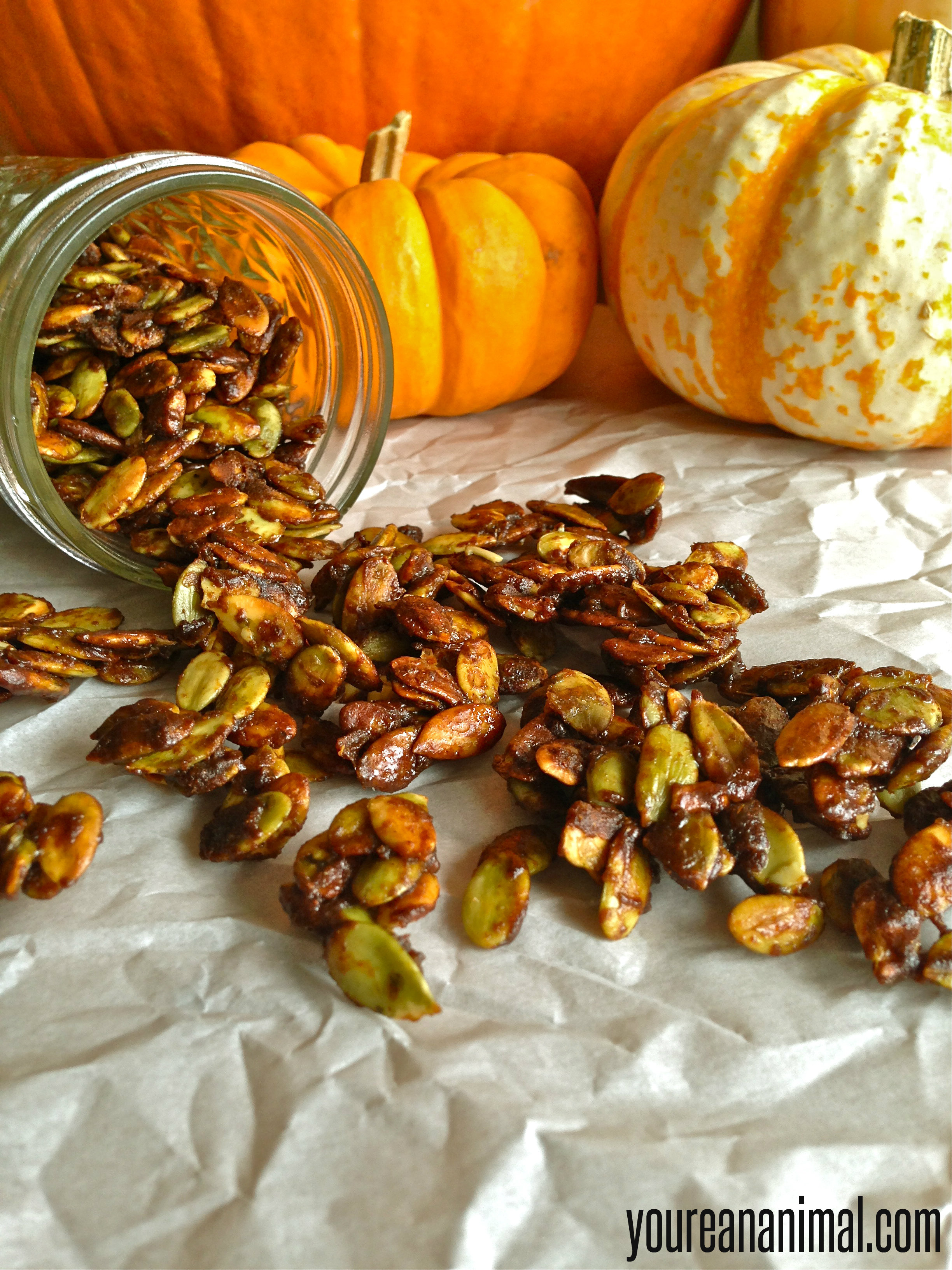 Autumn Salad with Spiced Pumpkin Seeds - You're An Animal.