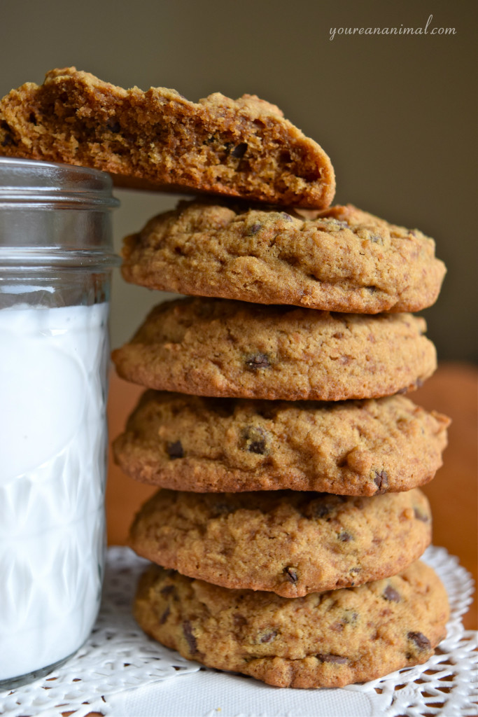 Gluten-Free Grain-Free Nut-Free Ultimate Chocolate Chip Cookies
