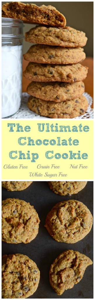 Gluten Free Grain Free Nut Free Ultimate Chocolate Chip Cookie