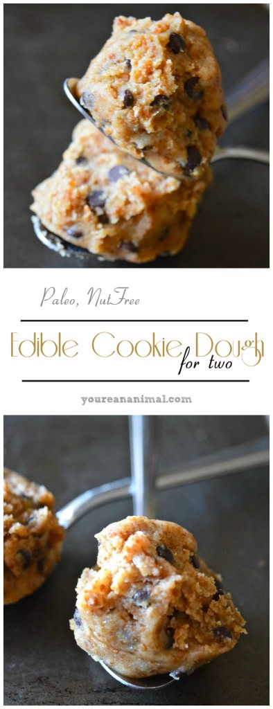 Gluten Free Paleo Nut Free Edible Cookie Dough For Two
