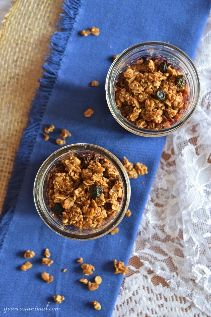 Gluten Free Vegan Paleo Individual Blueberry Crisp