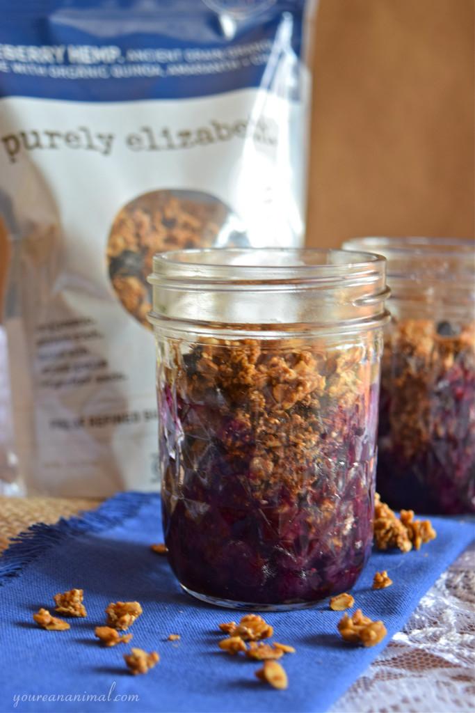Gluten Free Vegan Paleo Individual Blueberry Crisp Purely Elizabeth Granola
