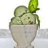 Dairy Free Paleo Mint Chocolate Chip Ice Cream